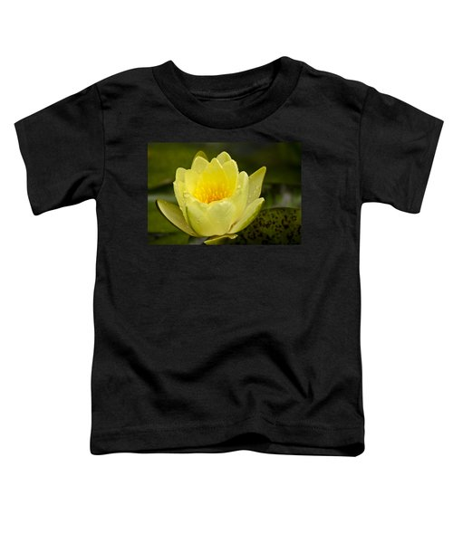 Yellow Water Lilly Toddler T-Shirt
