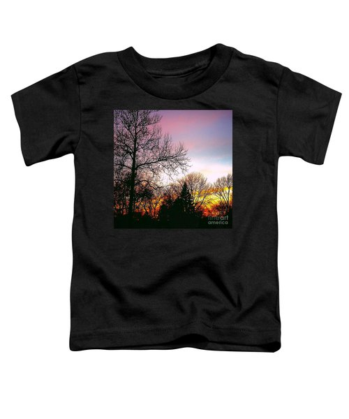 Yesterday's Sky Toddler T-Shirt