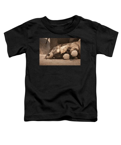 Young Elephant Lying Down Toddler T-Shirt