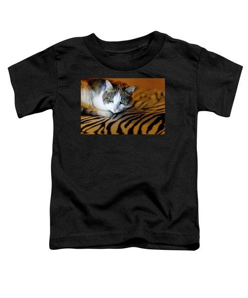 Zebra Cat Toddler T-Shirt