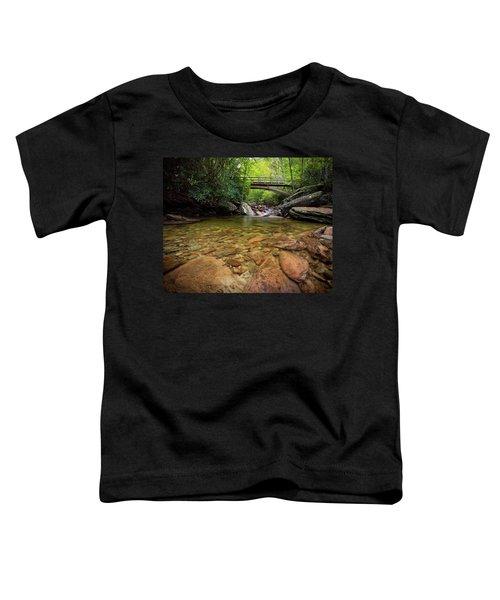 Boone Fork Bridge - Blue Ridge Parkway - North Carolina Toddler T-Shirt