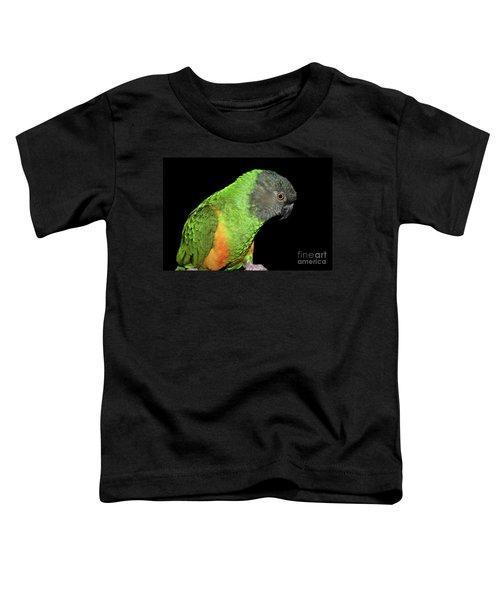Senegal Parrot Toddler T-Shirt