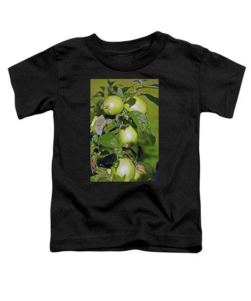 21/07/14  Chorley.  Astley Hall. Toddler T-Shirt