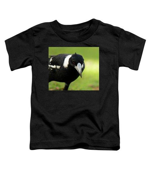 Australian Magpie Outdoors Toddler T-Shirt