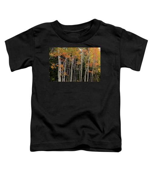 Toddler T-Shirt featuring the photograph Autumn As The Seasons Change by James BO Insogna