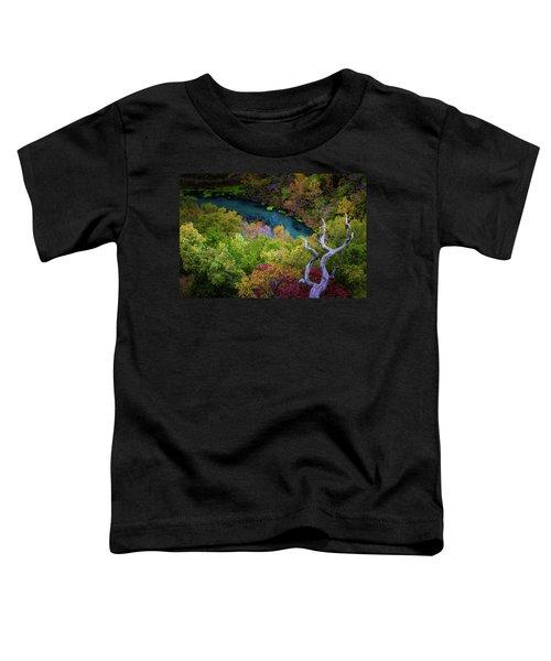 Autumn At Ha Ha Tonka State Park Toddler T-Shirt
