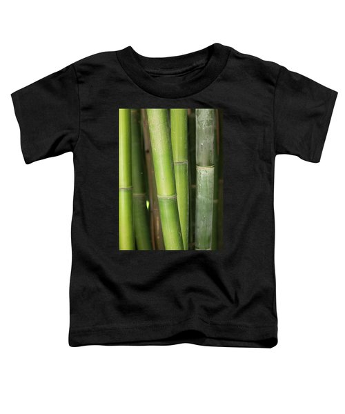 Bamboo Stalk 4057 Toddler T-Shirt