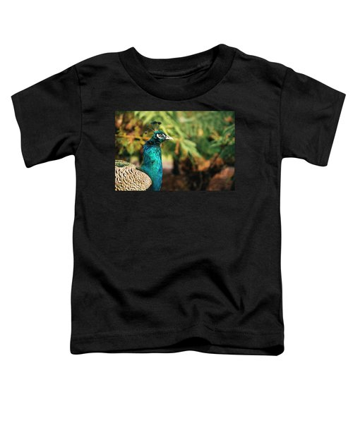 Beautiful Colourful Peacock Outdoors In The Daytime. Toddler T-Shirt