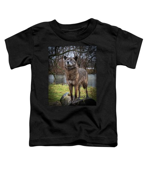 Best Of Show Pose Toddler T-Shirt