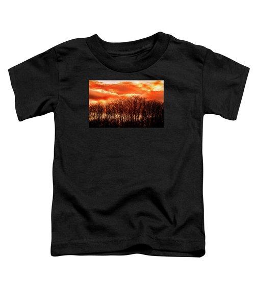 Bhrp Sunset Toddler T-Shirt