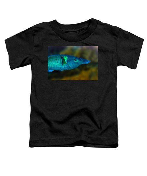 Bird Wrasse Toddler T-Shirt
