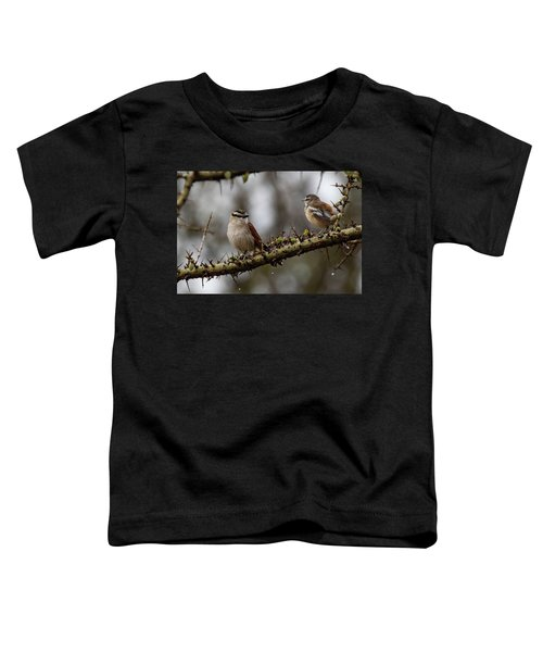 Black-crowned Tchagra And White-browed Scrub-robin Toddler T-Shirt