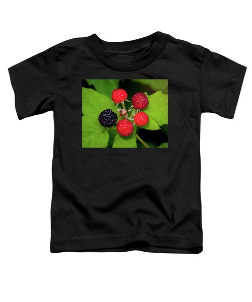 Blackberries Toddler T-Shirt