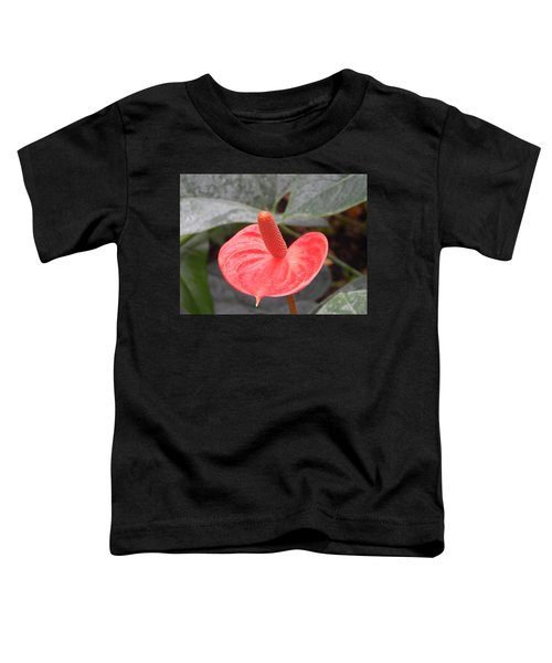 Botanical Garden Plants And Flowers Toddler T-Shirt