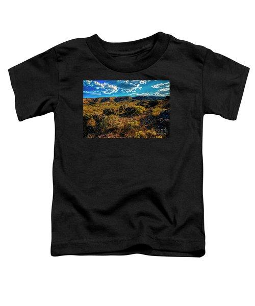 Colorado Summer Evening Toddler T-Shirt