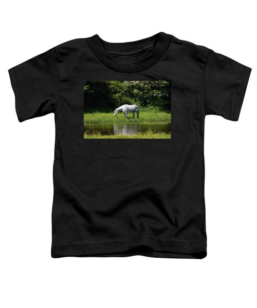 Cumbria. Ulverston. Horse By The Canal Toddler T-Shirt