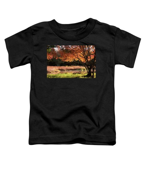 Dawn Lighting Rhode Island Fall Colors Toddler T-Shirt