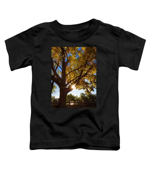 Electric Forest Toddler T-Shirt