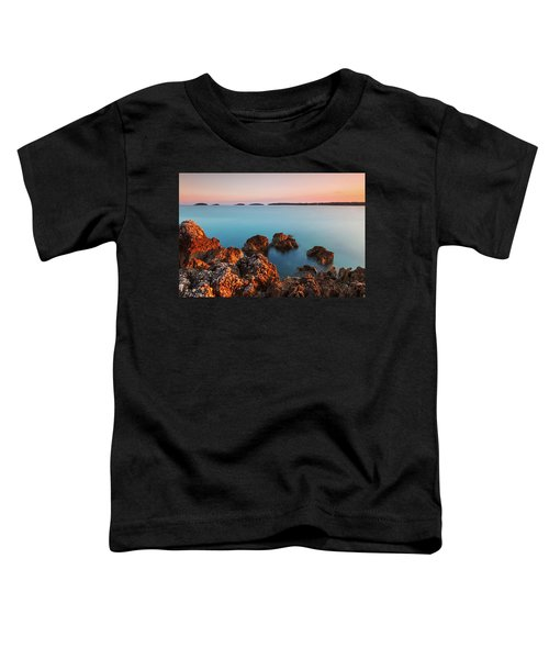 Ember And Blue Toddler T-Shirt