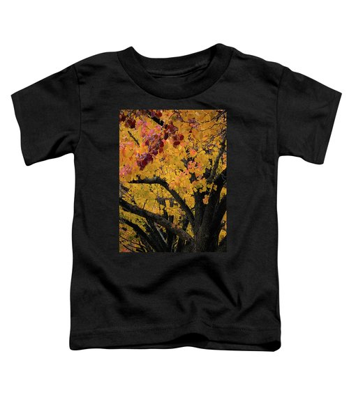 Fall In Carlyle Toddler T-Shirt