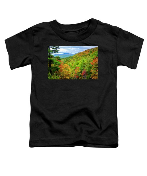 Fall In The Smokies Toddler T-Shirt