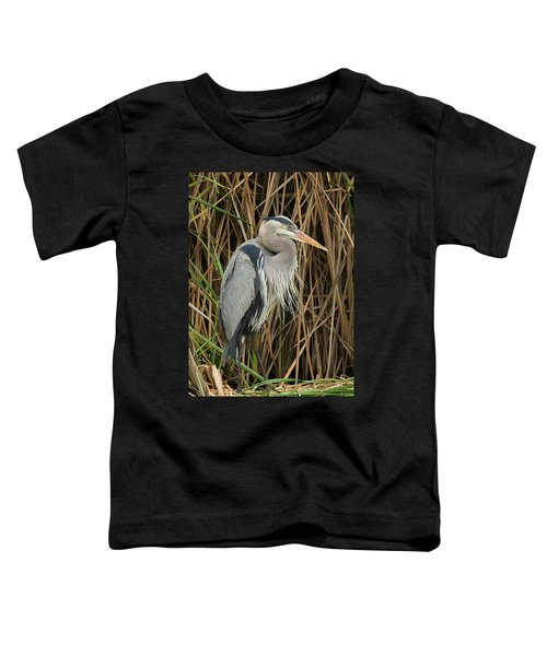 Great Blue Heron On Padre Island Toddler T-Shirt
