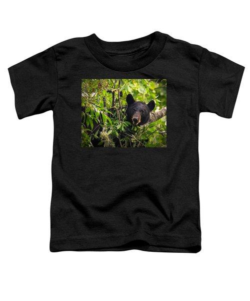 Great Smoky Mountains Bear - Black Bear Toddler T-Shirt