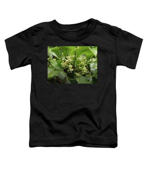 Holly Blossoms Toddler T-Shirt