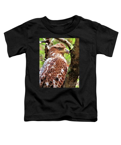 Immature Eagle Toddler T-Shirt