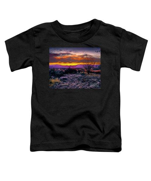 January Sunrise Toddler T-Shirt