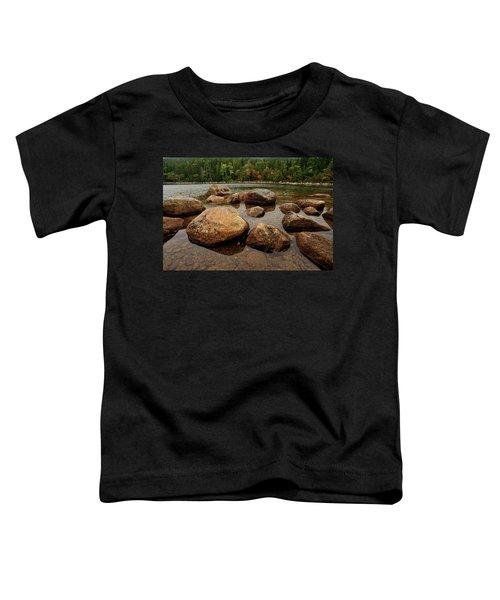 Jordon Pond Boulders Toddler T-Shirt