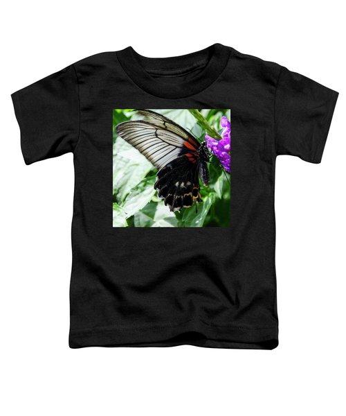Lacey Elegance Toddler T-Shirt