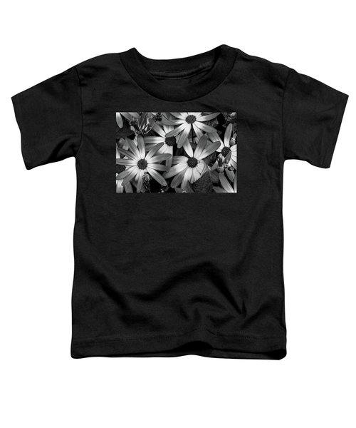 Multiple Daisies Flowers Toddler T-Shirt