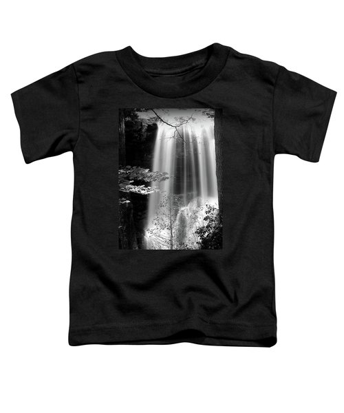 North Carolina Falls Toddler T-Shirt