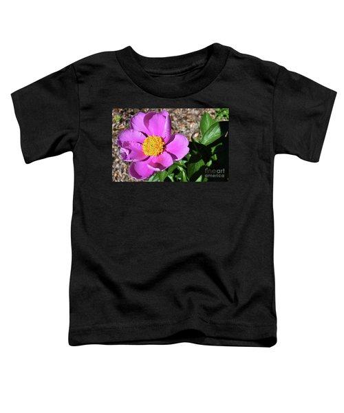 Painted Spring  Toddler T-Shirt