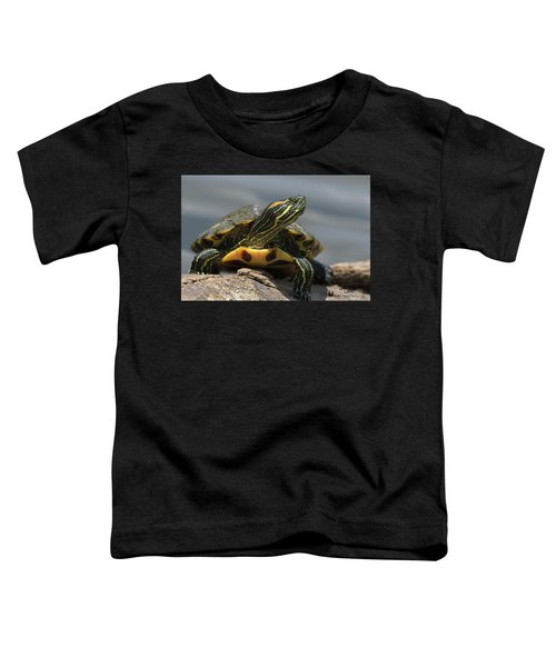 Portrait Of A Turtle Toddler T-Shirt