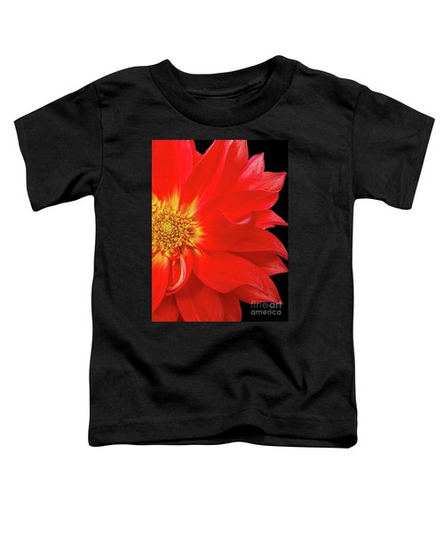 Red Dahlia On Black Background Toddler T-Shirt