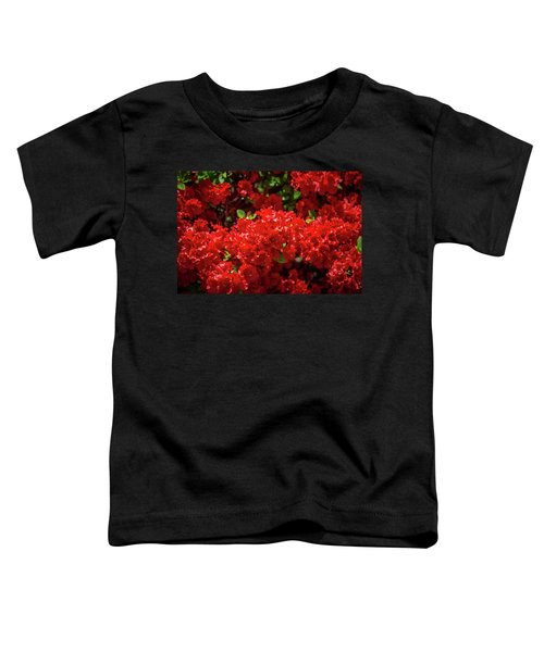 Red Flowers Toddler T-Shirt