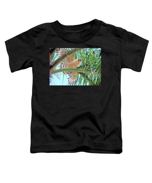 Red-shoulder Hawk Toddler T-Shirt
