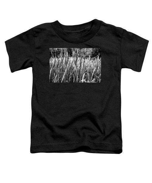 Rushes Rain Toddler T-Shirt