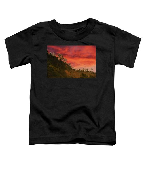 Silhouette Of Conifer Against  Seacoast  Toddler T-Shirt