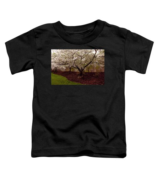 Snowy Cherry Blossoms Toddler T-Shirt