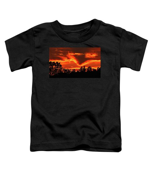 Springport, Michigan Sunset 4289 Toddler T-Shirt