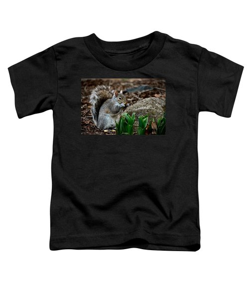 Squirrel And His Dinner Toddler T-Shirt