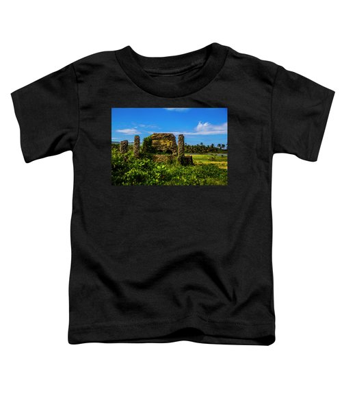 Stone Oven Toddler T-Shirt