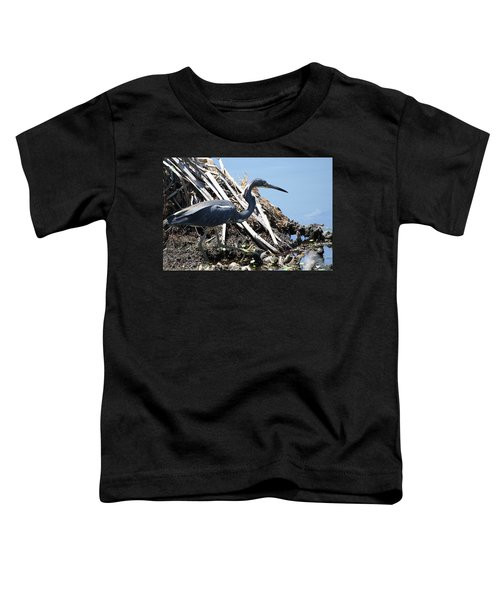 Tri-colored Heron 40312 Toddler T-Shirt