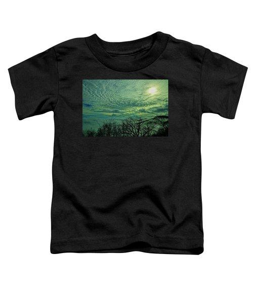Winter Clouds Toddler T-Shirt