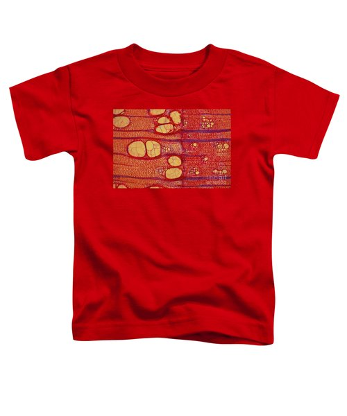 Black Locust Tree Vessels Toddler T-Shirt