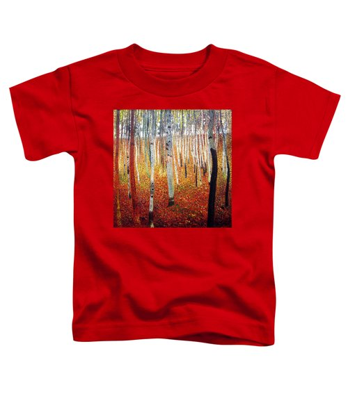 Forest Of Beech Trees Toddler T-Shirt