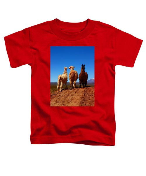 3 Amigos Toddler T-Shirt by FireFlux Studios